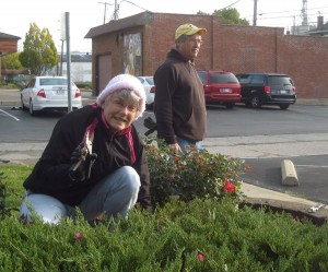 Cathy and Don trimmed the roses and weeded.